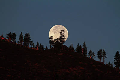 Photograph - Harvest Moonset by Donna Kennedy