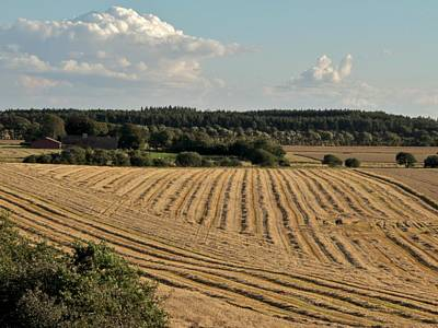 Field Of Crops Photograph - Harvest by Odd Jeppesen