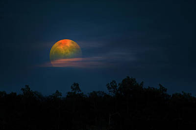 Photograph - Harvest Of The Moon by Mark Andrew Thomas