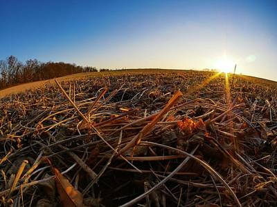 Photograph - Harvest by Ryan Shapiro