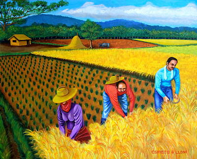 Rice Field Painting - Harvest Season by Cyril Maza