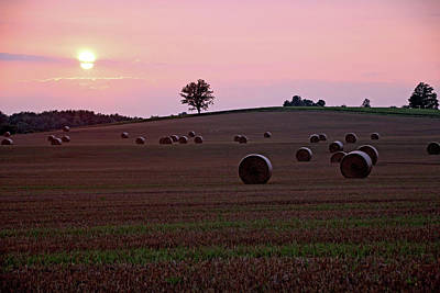 Photograph - Harvest Sunset by Debbie Oppermann