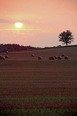 Photograph - Harvest Sunset I by Debbie Oppermann