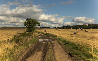 Dirt Roads Photograph - Harvest Time by Chris Fletcher