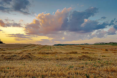 Photograph - Harvest Time by Gary McCormick