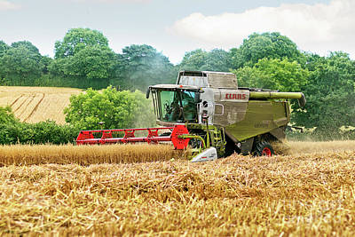 Photograph - Harvest Time In Mylor Cornwall by Terri Waters