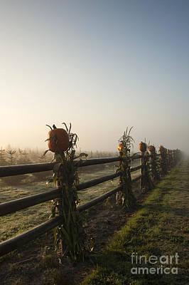 Harvest Time Art Print by Jim Corwin