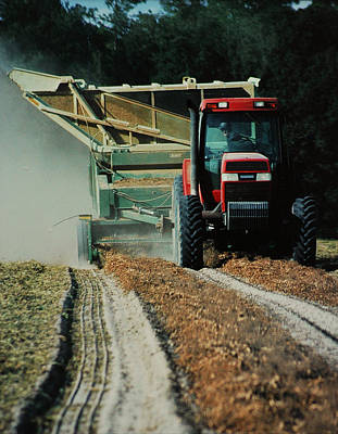 Photograph - Harvest Time by Lori Mellen-Pagliaro