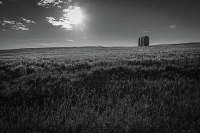 Photograph - Harvest Time by Pierre Cornay