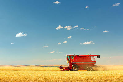 Machinery Photograph - Harvest Time by Todd Klassy