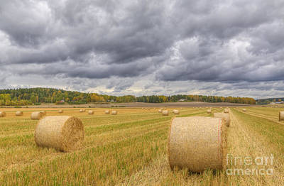 Harvest Photograph - Harvest Time by Veikko Suikkanen