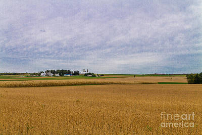 Photograph - Harvest Time by William Norton