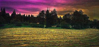 Photograph - Harvest Twilight by Gerry Tetz