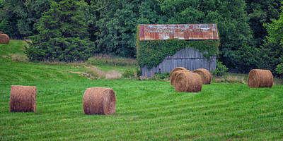 Photograph - Harvested Hay Bales And Shed Dsc05938-1 by Greg Kluempers