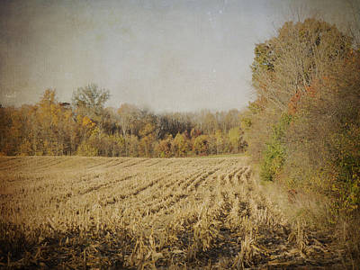 Photograph - Harvested by Michael Colgate