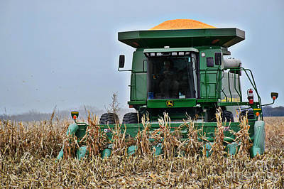 Photograph - Harvesting Corn-ii by Kathy M Krause