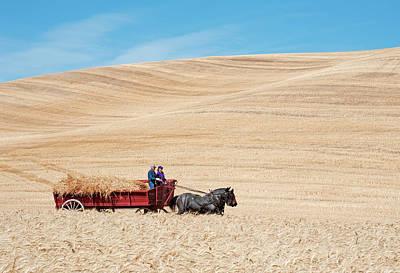 Photograph - Harvesting Day by Doug Davidson