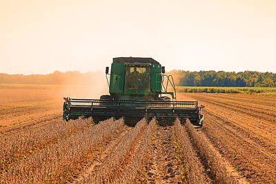 Photograph - Harvesting Soybeans by Ronald Olivier