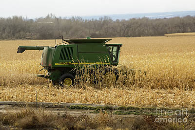 Photograph - Harvesting The Crop by Steven Parker