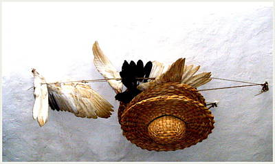 Straw Hat Digital Art - Hat And Feathers by Mindy Newman