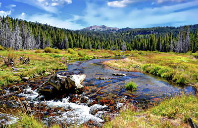Photograph - Hat Creek Meadow by Anthony Dezenzio