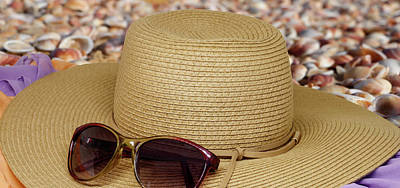 Open Impressionism California Desert - Hat from the sun with sunglasses on it by Emma Grimberg