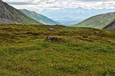 Photograph - Hatcher Pass In Summer                                     by Cathy Mahnke