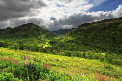 Fireweed Photograph - Hatcher's Valley by Ed Boudreau