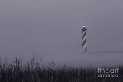 Photograph - Hatteras Purple Haze by Tony Cooper