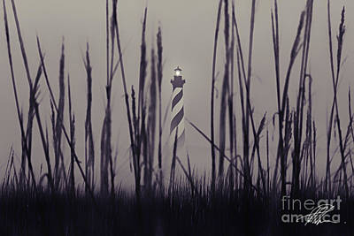 Photograph - Hatteras by Tony Cooper