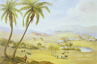 Caribbean House Painting - Haughton Court - Hanover Jamaica by James Hakewill