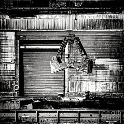 Photograph - Haul It by Olivier Le Queinec