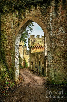 Castle Ruins Wall Art - Photograph - Haunted Castle by Adrian Evans
