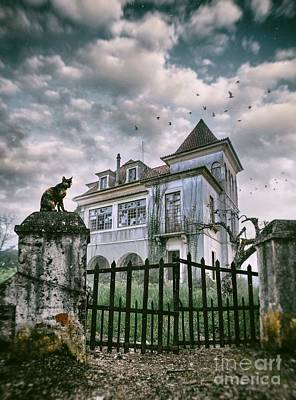 Haunted House And A Cat Art Print by Carlos Caetano