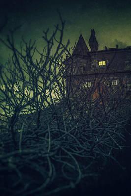 Photograph - Haunted Mansion by Carlos Caetano
