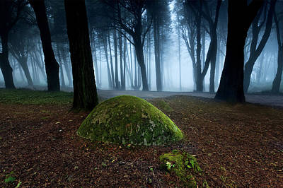 Photograph - Haunting by Jorge Maia