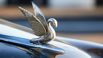 Photograph - Havana Hood Ornament by David Beebe