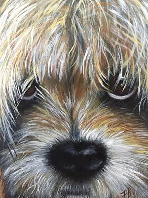 Painting - Havanese by FayBecca Designs