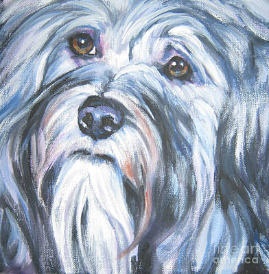Havanese Art Print by Lee Ann Shepard