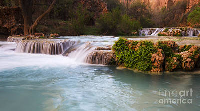 Photograph - Havasu Creek Grand Canyon 7 by Bob Christopher