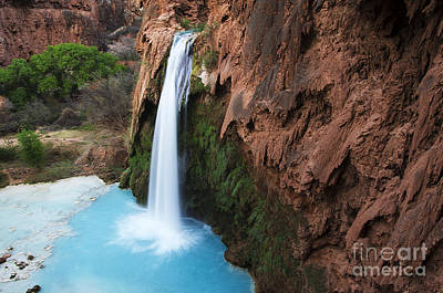 Photograph - Havasu Falls Grand Canyon 1 by Bob Christopher