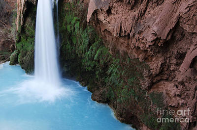 Photograph - Havasu Falls Grand Canyon 4 by Bob Christopher