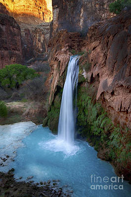 Photograph - Havasu Falls Grand Canyon 5 by Bob Christopher
