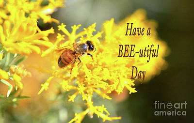 Photograph - Have A Bee Utiful Day Card by Debby Pueschel