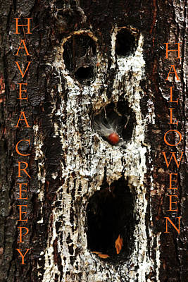 Photograph - Have A Creepy Halloween by Debbie Oppermann