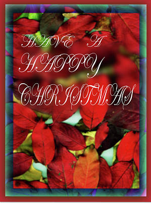 Photograph - Have A Happy Christmas by Nareeta Martin