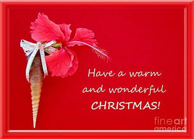 Photograph - Have A Warm Wonderful Christmas by Barbie Corbett-Newmin