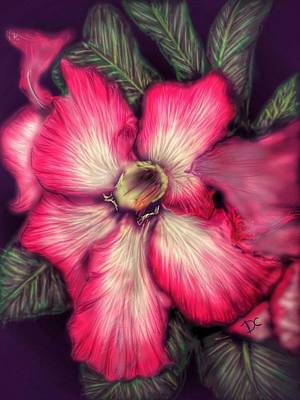 Digital Art - Hawaii Flower by Darren Cannell