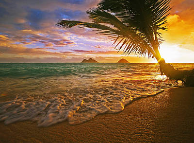 Photograph - Hawaii Lanikai Sunrise by Tomas del Amo - Printscapes