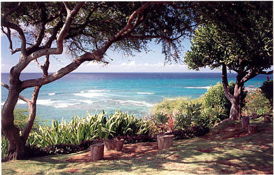 Art Print featuring the photograph Hawaii by Lori Mellen-Pagliaro